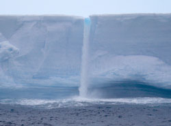 In their intensive study of Antarctic icebergs and their surrounding ecosystems, the researchers found enhanced biological productivity out to a distance of several miles, which may play a role in climate change. The waterfall is meltwater from the iceberg, which appears to act as a fertilizer to the waters surrounding the ice. Credit: John Helly, SDSC.